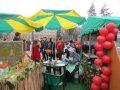 Участие в Ярмарке «Парад профессий»